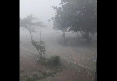 Клип от бурята в Рогозен стана вайръл в социалната мрежа