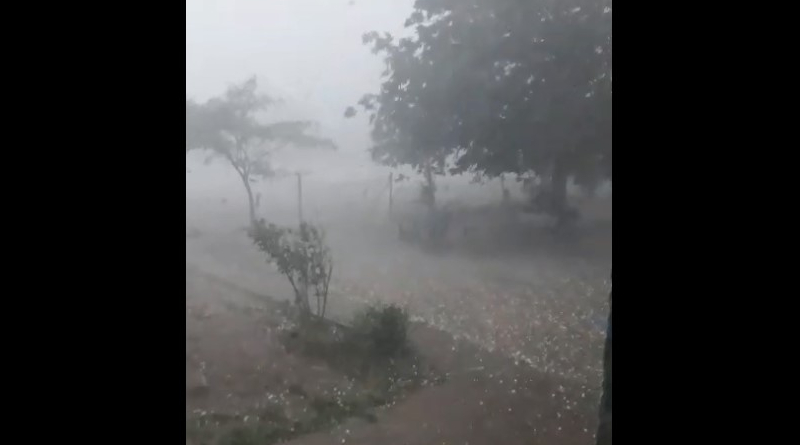 бурята в рогозен